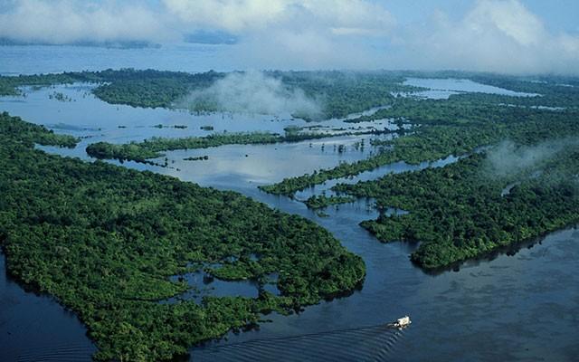 Casa del Manacapurú. Amazonia. CIPO Company