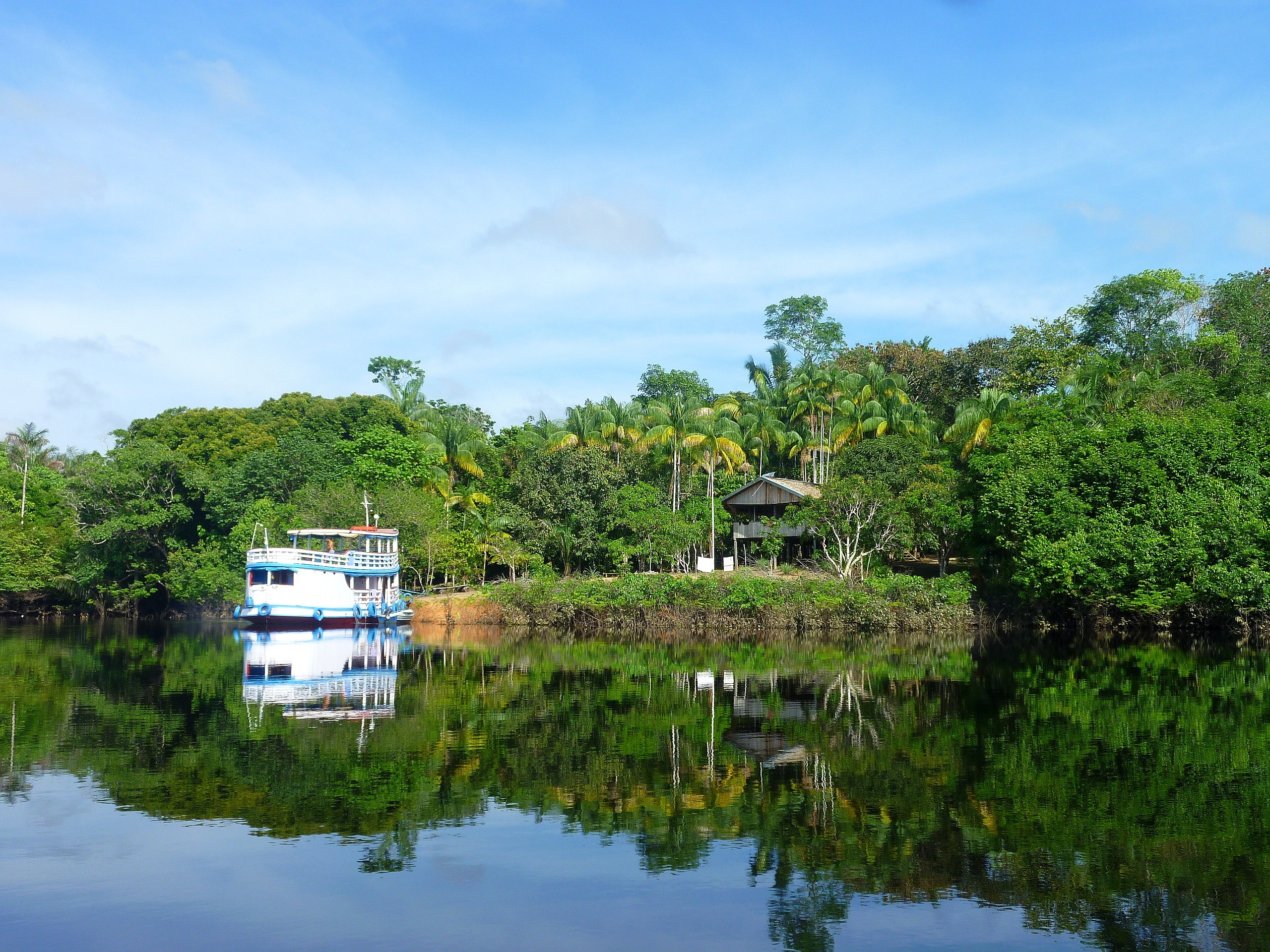 ExpedicionAmazonia4_CIPOCompany