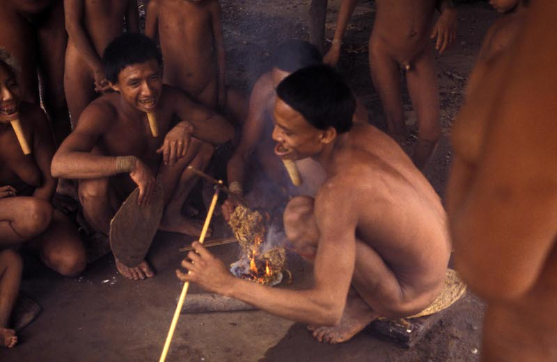 Amazonia, última llamada