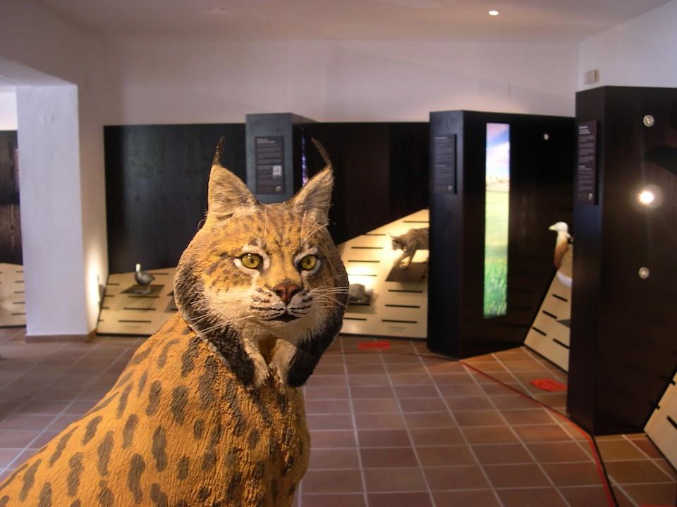 Centro de Especies Amenazadas del Parque Natural de Cazorla