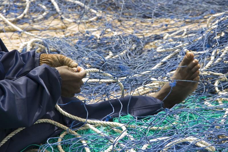 Senegal: la pesca se acaba