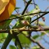 ExpedicionAmazonia24_CIPOCompany