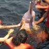 ExpedicionAmazonia5_CIPOCompany